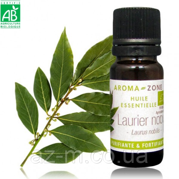 Лавр благородный (Laurus nobilis) BIO эфирное масло