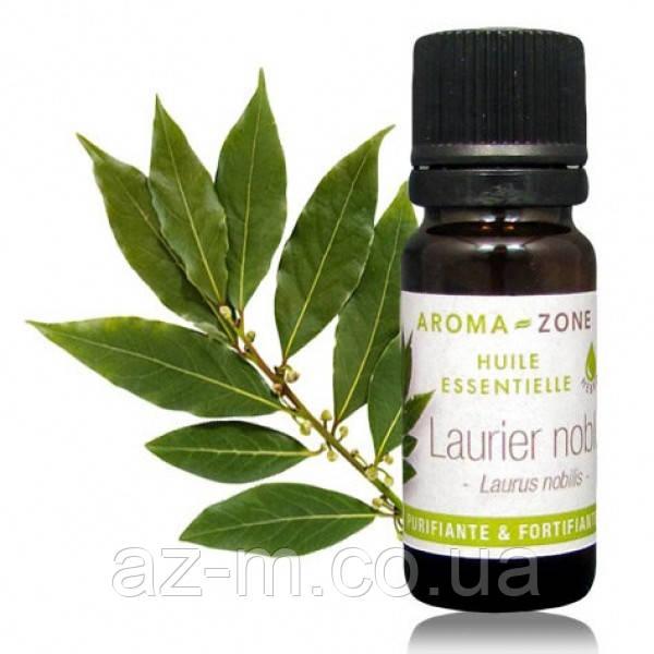 Лавр благородный (Laurus nobilis) эфирное масло