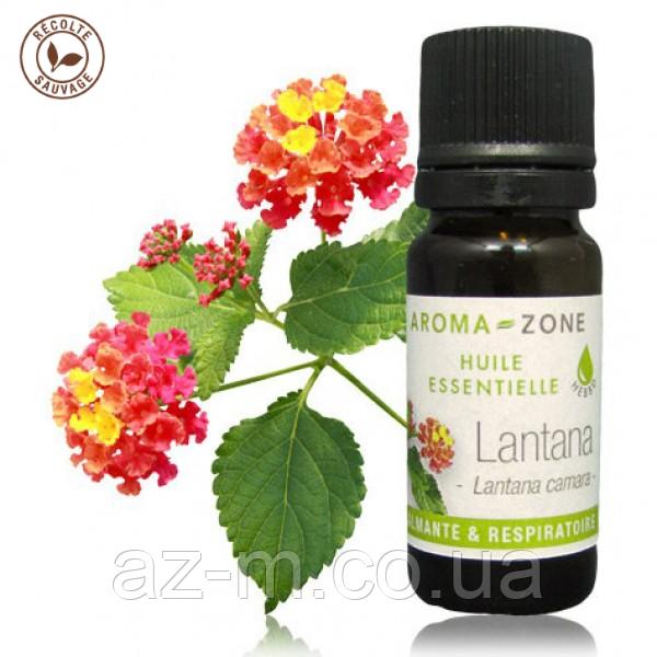 Лантана (Lantana camara) эфирное масло, 10 мл