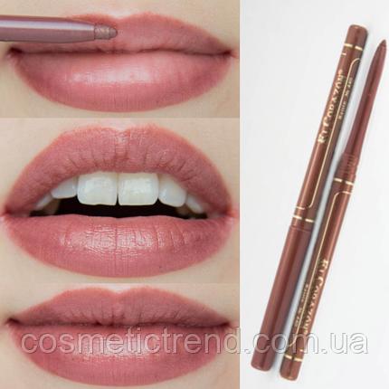 Контурний олівець для губ механічний Perfect Lips №440 Raisin El Corazon, фото 2