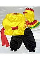 Карнавальный костюм петушок № 2