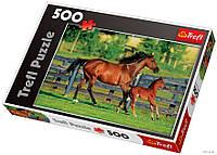 Пазлы Trefl  500шт (37095) 48*34см (Конь и жеребенок)