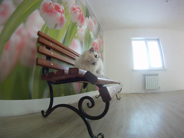 кованная мебель для дачи не дорого