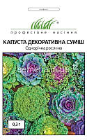 "Семена Капуста декоративна (Brassica oleracea) 0,3 г ""Професійне насіння"""