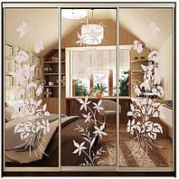 Удобный и практичный шкаф-купе мебельной фабрики ДОМ, модель Виват В216