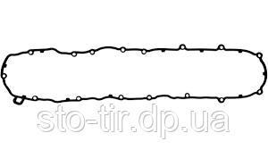 Прокладка клапанной крышки DAF XF-105 , CF 1656305