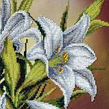 Набор для вышивания бисером Белые лилии, фото 2