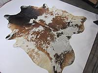 Богатая, шикарная коровья шкура темно коричневого цвета, фото 1
