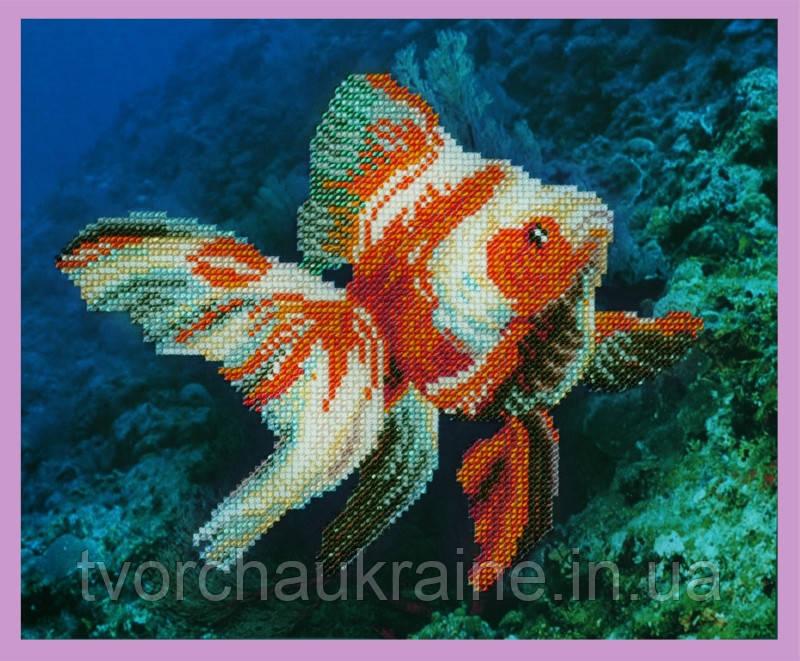 Набор для вышивания бисером Золотая рыбка