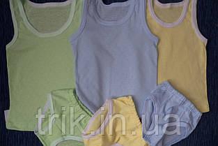 Комплект нижнего белья для мальчика голубой мультирип, фото 2