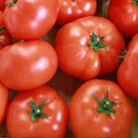 Семена томата Гравитет F1 500 семян полудетерминантные