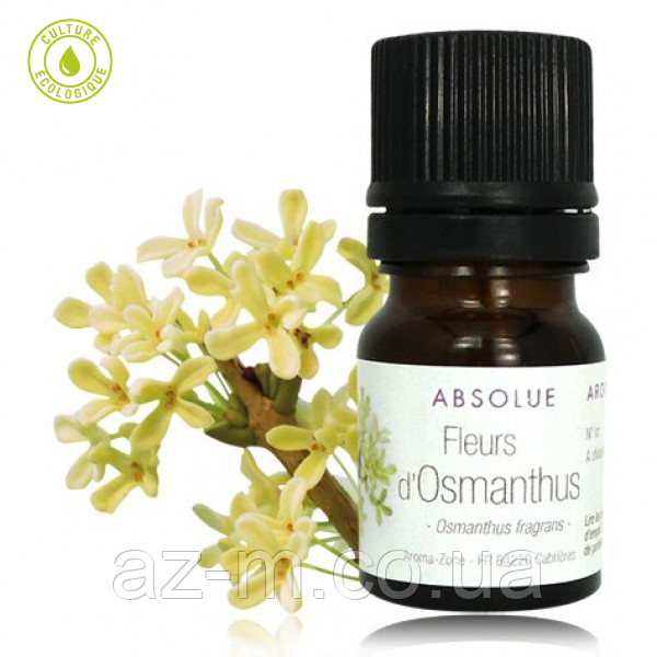 Абсолют Османтуса (Osmanthus fragrans), 0,5 мл