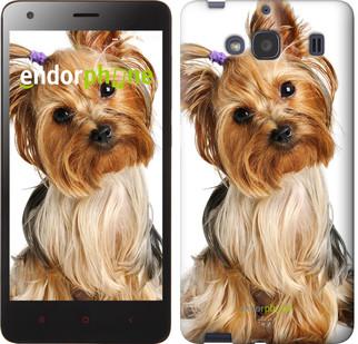"""Чехол на Xiaomi Redmi 2 Йоркширский терьер с хвостиком """"930c-98"""""""