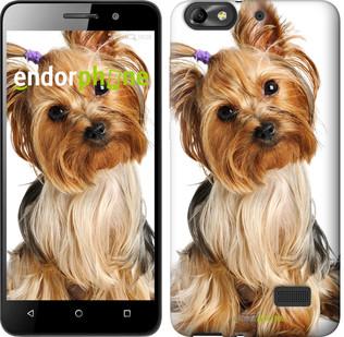 """Чехол на Huawei Honor 4C Йоркширский терьер с хвостиком """"930u-183"""""""