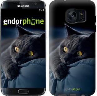 """Чехол на Samsung Galaxy S7 Edge G935F Дымчатый кот """"825c-257"""""""