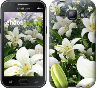 """Чехол на Samsung Galaxy J1 J100H Белые лилии """"2686c-104"""""""