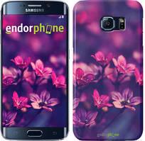 """Чехол на Samsung Galaxy S6 Edge G925F Пурпурные цветы """"2719c-83"""""""