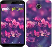 """Чехол на Motorola Nexus 6 Пурпурные цветы """"2719c-67"""""""
