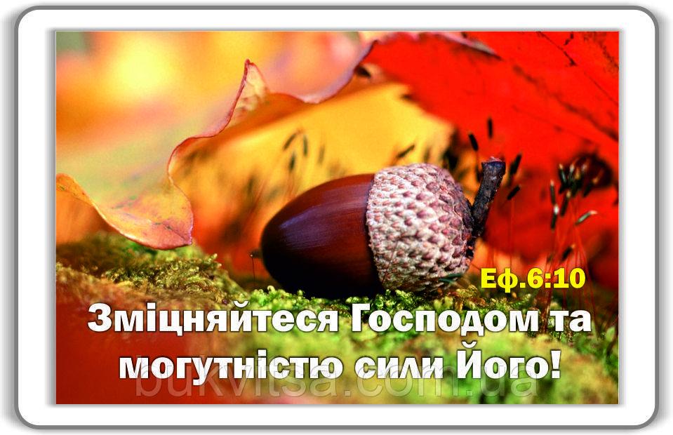 Магніт: Зміцняйтеся Господом... 7х4,5см #82