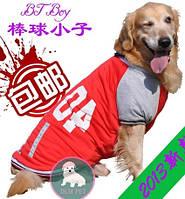 Куртка-Бомбер для собак крупных пород. Одежда для собак.