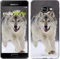 "Чехол на Samsung Galaxy A3 (2016) A310F Бегущий волк ""826c-159"""