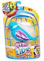 Интерактивная Птичка Little Live Pets Сладкое Печенье
