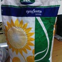 Семена подсолнечника Сингента (Syngenta) - Тутти