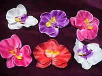 Головка орхидеи, фото 1