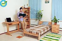 Стол письменный Лидер, фото 1