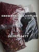 Сублимированная ягода ежевика