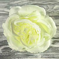 Роза 4432