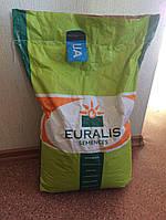 Семена подсолнечника (Евралис) ЕС Белла импорт. остаток 2015 г.