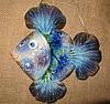 Рыбка «Попугай»