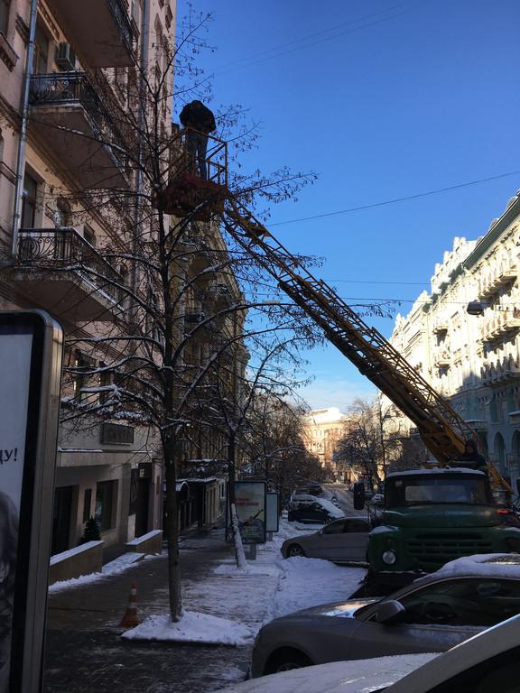 Монтаж  светодиодных гирлянд на деревья с помощью вышки.