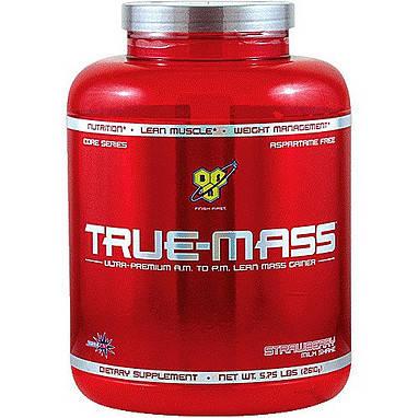 True Mass BSN 2,61 кг, фото 2