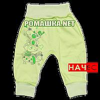 Штанишки на широкой резинке с начесом р. 80-86 ткань ФУТЕР 100% хлопок ТМ Алекс 3179 Зеленый 80