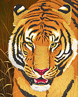 Схема для вышивки бисером Тигр