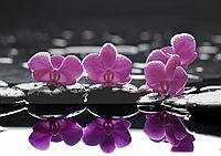 Схема для вышивки бисером Яркие орхидеи в отражении