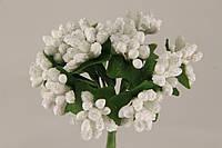 Тычинка белая 2016-1-11-1