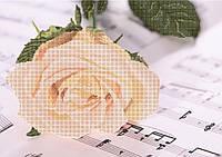 Схема для вышивки бисером Роза на нотной тетради