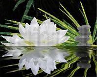 Схема для вышивки бисером Отражение. Белая лилия