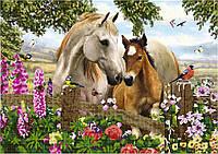Схема для вышивки бисером Лошади в поле