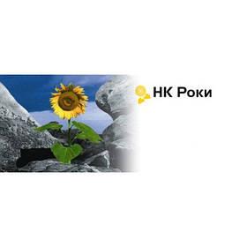 Семена подсолнечника Сингента НК Роки (НК Роки Syngenta NK Rocki)