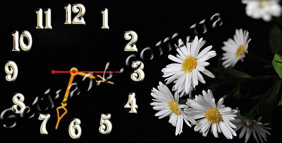 """Часы настенные """"Ромашки"""" (30х60 см)"""
