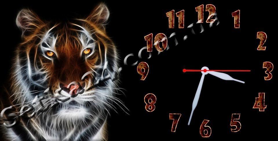 """Часы настенные """"Тигр"""" (30х60 см)"""