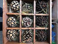 Новогодние игрушки деревянные шары, шишки, 40х40см