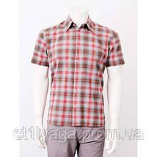 Рубашка серая в мелкую красную клетку с коротким рукавом