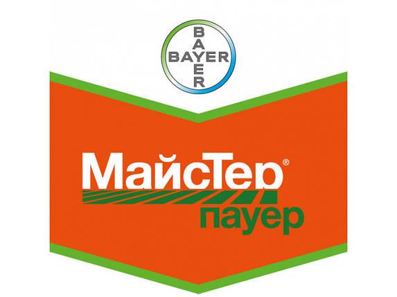 МайсТер® Пауер, фото 2