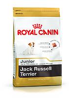Royal Canin (Роял Канин) Jack Russell Junior 0,5кг - корм для щенков породы Джек-Рассел терьер