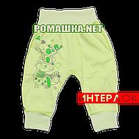 Штанишки на широкой резинке р. 68 демисезонные ткань ИНТЕРЛОК 100% хлопок ТМ Алекс 3297 Зеленый